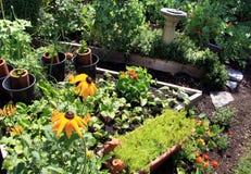 Garten am Sommer Lizenzfreie Stockbilder