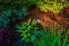 Garten-Stellen-Beleuchtung Stockfotos