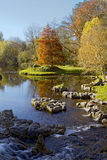 Garten Str.-Fiachras Stockfoto