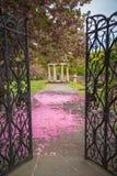 Garten-Szene im Frühjahr stockfotografie