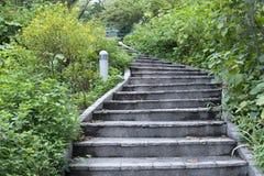 Garten-Treppen Stockfotos
