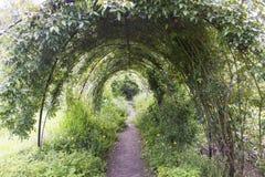 Garten-Tunnel Stockfoto
