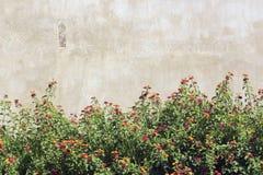 Garten- und Blockwand Stockfoto