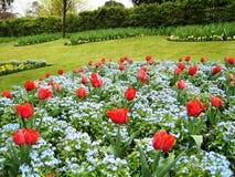 Garten und Blumen in Guildford Lizenzfreies Stockbild