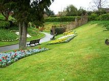 Garten und Blumen in Guildford Stockbilder