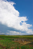 Garten und Wolken Stockfotografie