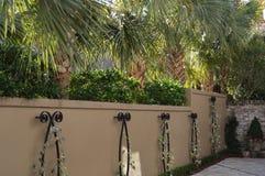 Garten-Wand in Süd-Vereinigten Staaten Stockbild