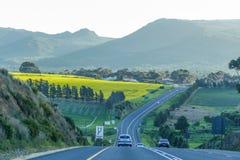 Garten-Weg in Südafrika lizenzfreies stockfoto