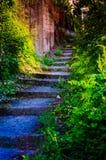 Garten-Weg-Schritte Stockfotos