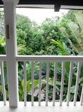 Gartenansicht vom Balkon des tropischen Hauses Stockfotografie