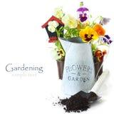 Gartenarbeit. Lizenzfreie Stockbilder