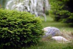 Gartenarbeit Stockfotografie