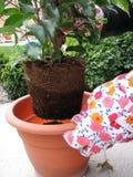 Gartenarbeit Lizenzfreies Stockfoto