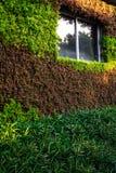 Gartenarbeit des grünen Hauses Lizenzfreie Stockbilder
