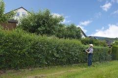 Gartenarbeit, Hecke schneiden stockbilder