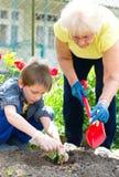Gartenarbeit, Konzept pflanzend Stockfotografie