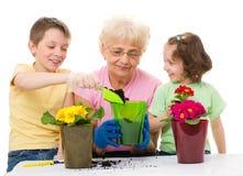 Gartenarbeit, Konzepte pflanzend Lizenzfreies Stockfoto