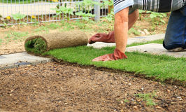 Gartenarbeit - Legen der Grasscholle für neuen Rasen lizenzfreie stockbilder