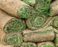 Gartenarbeit: Rasengrasrollen Stockfotografie