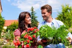 Gartenarbeit am Sommer - Paar mit Kräutern und Blume stockfotografie
