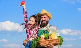 Gartenarbeit und Ernten Familienbauernhofkonzept Bärtiger rustikaler Landwirt des Mannes mit Kind Nur selbstgezogene Ernte der La lizenzfreie stockfotos