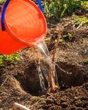 Gartenarbeit und Pflanzen Lizenzfreie Stockfotografie