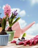 Gartenarbeithilfsmittel und -blume lizenzfreies stockbild