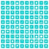 100 Gartenarbeitikonen stellten Schmutz blau ein Lizenzfreie Stockfotografie