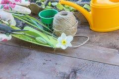 Gartenarbeitkonzept des Frühlinges lizenzfreie stockfotos