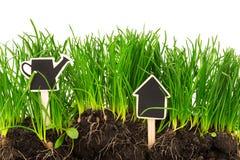 Gartenarbeitkonzept: Gras, Boden, Brett für Text Stockfoto