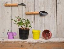 Gartenarbeitkonzept mit Weinleseart Stockfoto