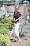 Gartenarbeitmitte Lizenzfreies Stockbild