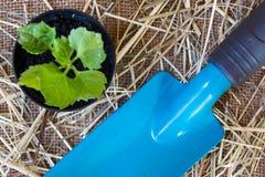Gartenarbeitschaufel auf Leinwandhintergrund Lizenzfreies Stockfoto