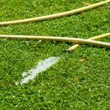 Gartenarbeitschlauch Lizenzfreies Stockfoto