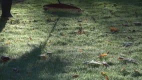 Gartenarbeitskraft, die Blätter vom eisigen Rasen am Herbstmorgen harkt nahaufnahme 4K stock video footage