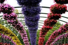 Gartenarbeittopfpflanze des Behälters Lizenzfreies Stockbild