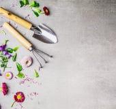 Gartenarbeitwerkzeug- und -blumenanlage auf grauem Steinhintergrund, Draufsicht Stockbilder