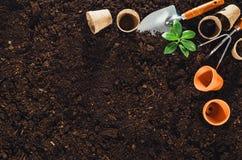 Gartenarbeitwerkzeuge auf Gartenboden masern Draufsicht des Hintergrundes Lizenzfreie Stockfotos