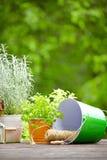 Gartenarbeitwerkzeuge im Freien Stockfotografie