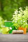 Gartenarbeitwerkzeuge im Freien Lizenzfreies Stockfoto