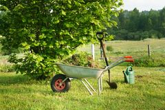 Gartenarbeitwerkzeuge am Morgen Stockfotografie