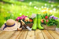 Gartenarbeitwerkzeuge und -blumen auf der Terrasse lizenzfreie stockbilder