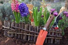 Gartenarbeitwerkzeuge und Frühlingsblumen Lizenzfreie Stockbilder