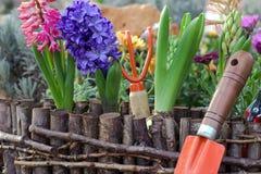 Gartenarbeitwerkzeuge und Gartenblumen Stockbilder