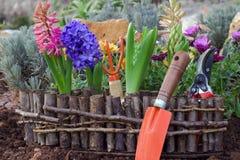 Gartenarbeitwerkzeuge und Gartenblumen Stockfotos