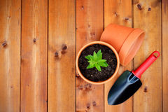 Gartenarbeitwerkzeuge und -gegenstände auf altem hölzernem Hintergrund Stockfoto