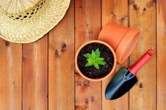 Gartenarbeitwerkzeuge und -gegenstände auf altem hölzernem Hintergrund Lizenzfreies Stockbild