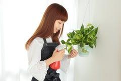 Gartenbau Stockfoto