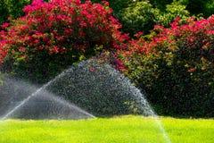 Gartenberieselungsanlage während der Bewässerung des grünen Rasens Stockbild