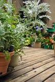 Gartenboden Lizenzfreie Stockfotos